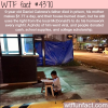 the story of 9 year old daniel cabrera wtf fun