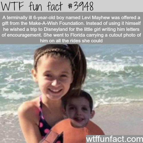 The story of Levi Mayhew - WTF fun facts