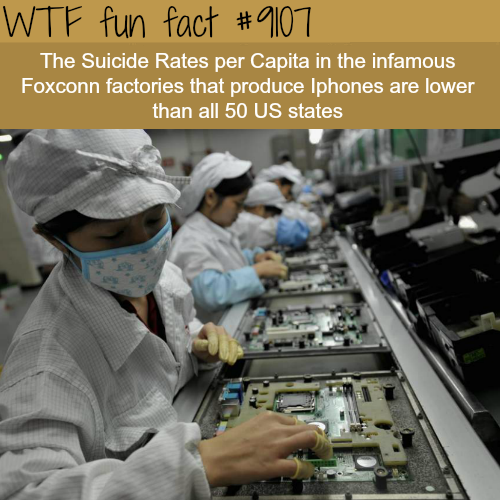 The Suicide Rates in Apple Factory - WTF fun fact