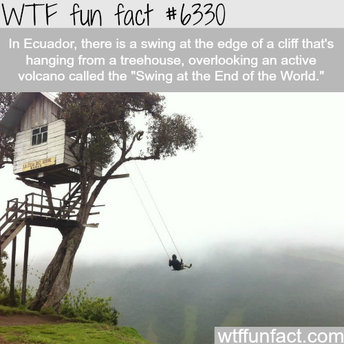 The Swing at the End of the World - WTF fun facts