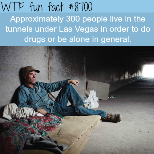 The tunnels in Las Vegas  - WTF fun facts