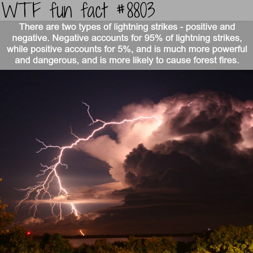 The Two Types of Lightning Strikes - WTF fun facts