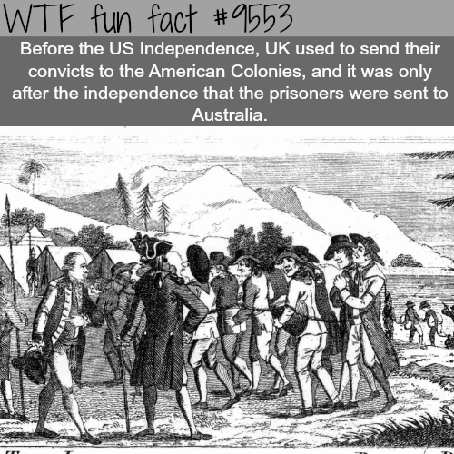 The UK sent thousands of its prisoners to the U.S. - WTF fun fact