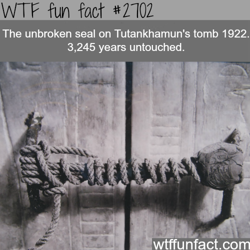 The unbroken seal to king Tutankhamun's tomb -WTF funfacts