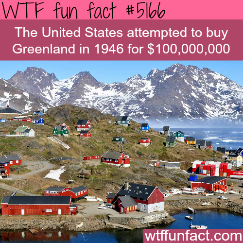 The United Stated wanted to buy Greenland - WTF fun facts