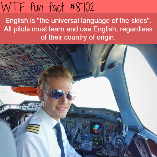 The Universal Language of the Skies - WTF fun facts