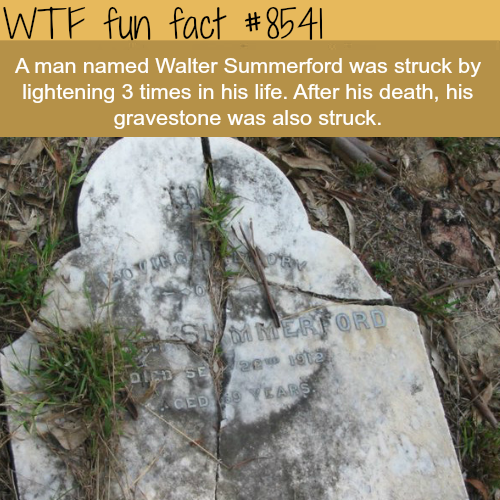 The unluckiest man in history? Walter Summerford - WTF fun facts