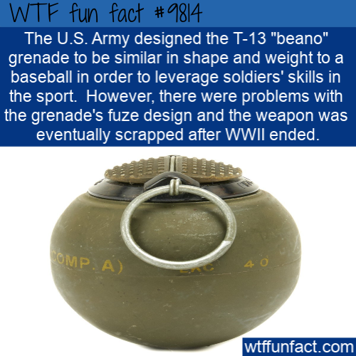 """The U.S. Army designed the T-13 """"beano"""" grenade to be similar in shape and weight to a baseball in order to leverage soldiers' skills in the sport. However"""