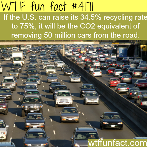 The U.S. recycling rate -  WTF fun facts