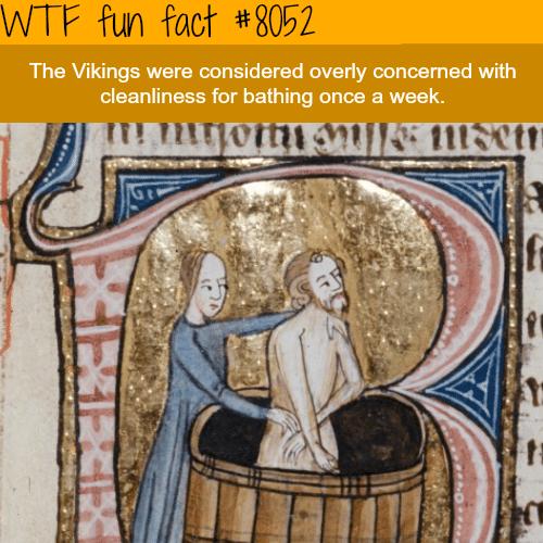 The Vikings - WTF fun fact