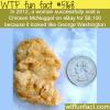 the weirdest stuff sold on ebay wtf fun facts