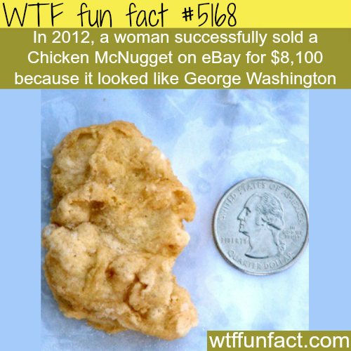 The weirdest stuff sold on Ebay - WTF fun facts