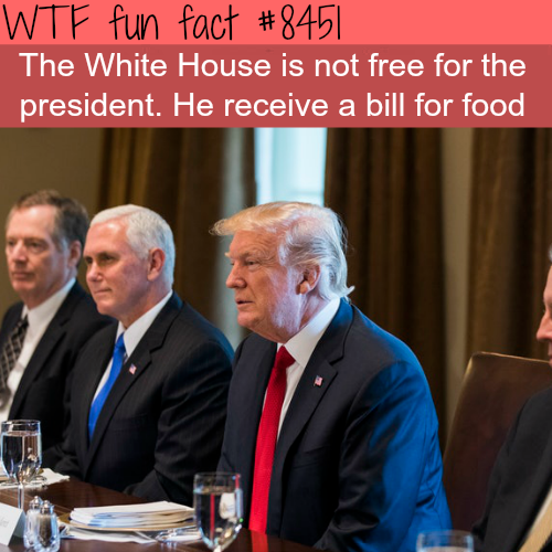 The White House is not free for the president - WTF fun facts