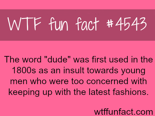 The word dude -   WTF fun facts