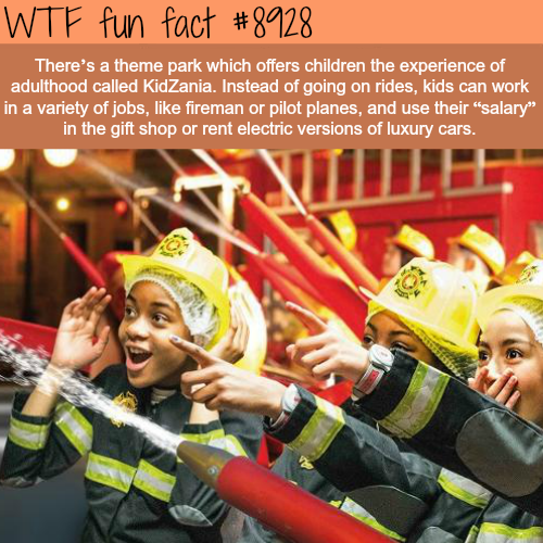 Theme park KidZania - WTF fun facts