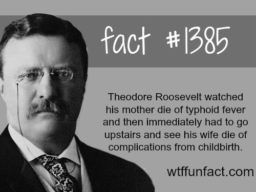 Theodore Roosevelt - people's fact