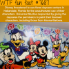 things you dont know about disney wtf fun facts