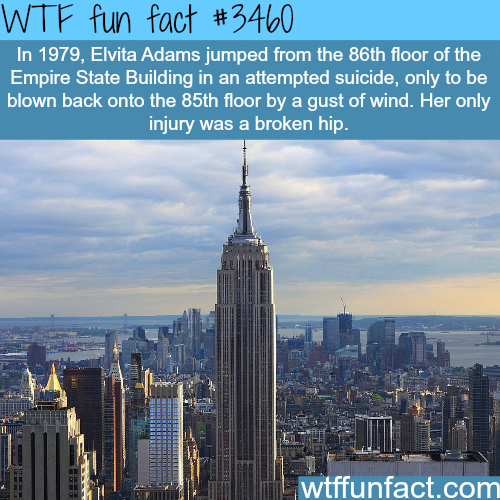 This person survived a jump from the Empire State building - WTF fun facts
