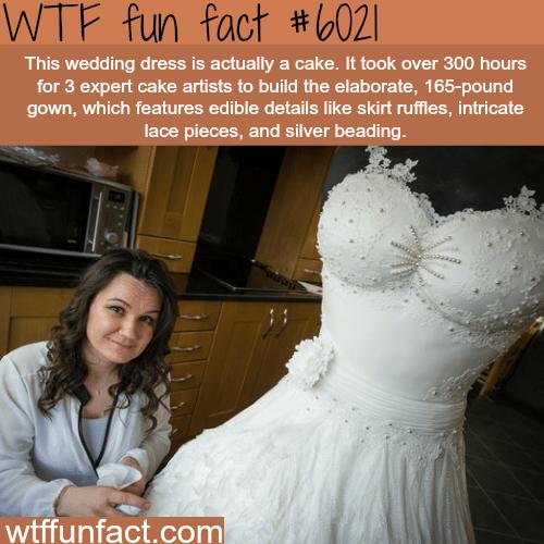 This wedding dress - WTF fun facts