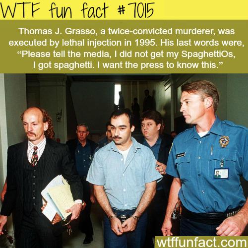 Thomas J. Grasso - WTF fun facts