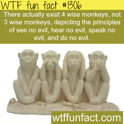 Three wise monkeys - facts