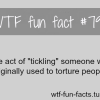 tickling facts