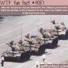 tienanmen square massacre facts wtf fun facts