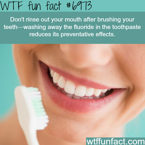 Tips on brushing your teeth - WTF fun fact