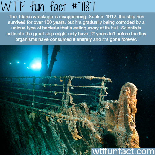Titanic wreckage will disapeare by 2030