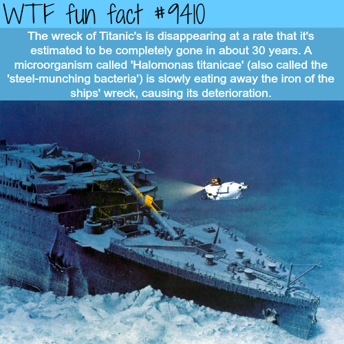 Titanic's wreckage s disappearing - WTF fun facts
