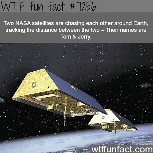 Tom & Jerry satellites - WTF fun fact