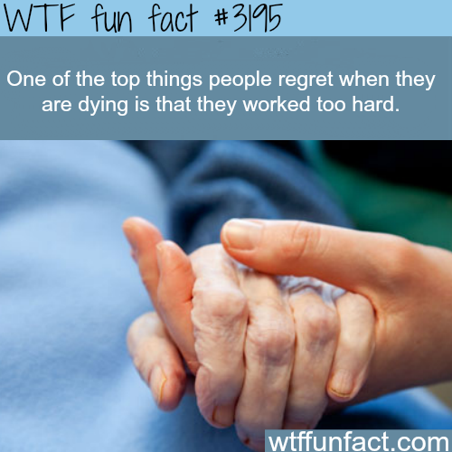 Top things people regret when they are dying -  WTF fun facts