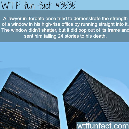 Toronto lawyer pops the glass of a building and dies - WTF fun facts