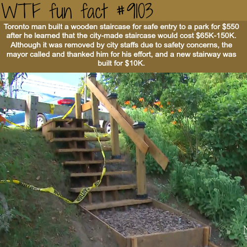 Toronto Man Built a Staircase for $550 after the city said it would cost $65k - WTF fun fact
