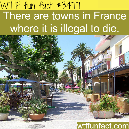 Towns in France where it's illegal to die -  WTF fun facts