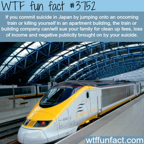 Train Suicide in Japan - WTF fun facts