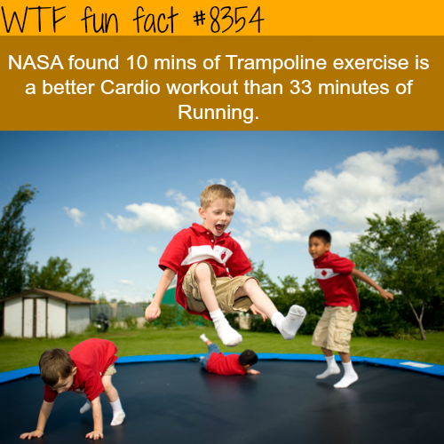 Trampoline exercise - WTF fun facts
