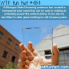 transparent solar panel made by michigan state