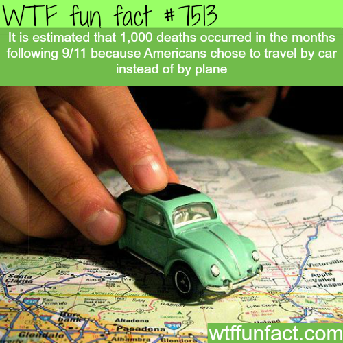 Travel by car - WTF FUN FACTS