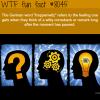 treppenwitz wtf fun fact