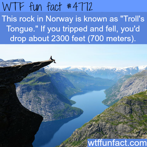 Troll's Tongue in Norway - WTF fun facts