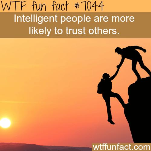 Trust - WTF fun facts
