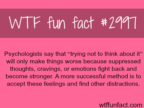 Trying not to think about it -  WTF fun facts