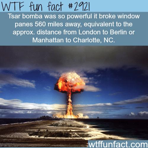 Tsar bomba -WTF fun facts