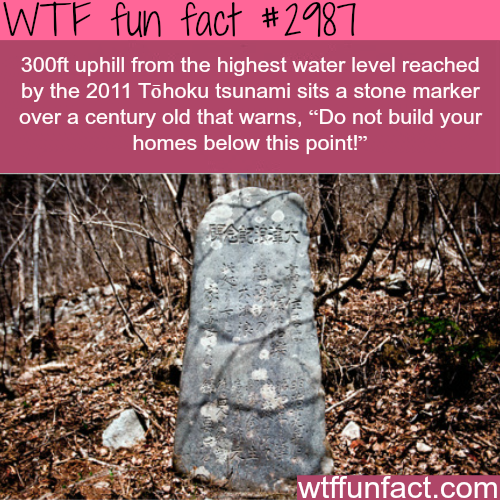 Tsunami fact that will blow your mind -WTF fun facts