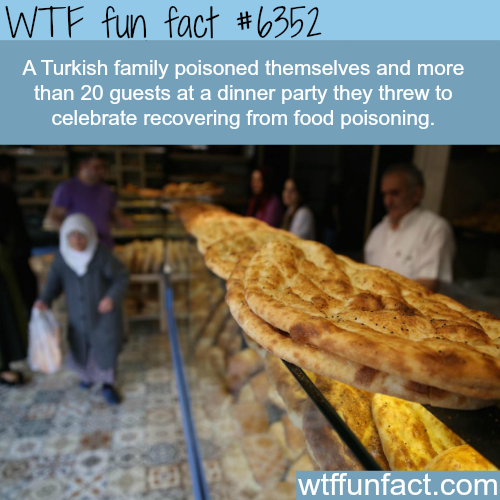 Turkish family gets poisoned at dinner party… - WTF fun facts