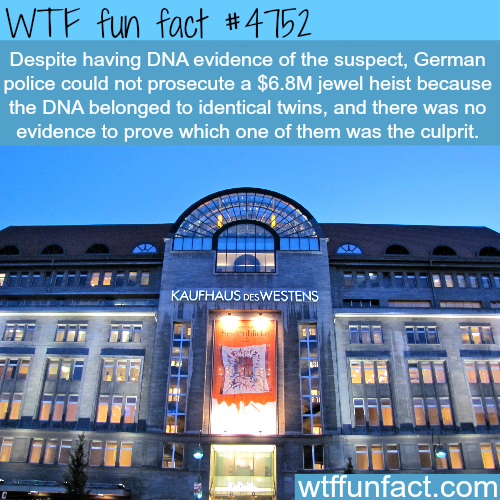 Twins commit the perfect crime - WTF fun facts