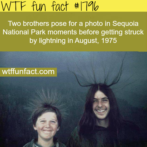 Two brothers pose for a photo in sequoia -WTF fun facts