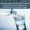 ultra pure water can kill you wtf fun fact