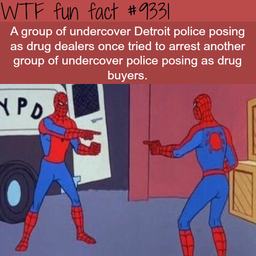 Undercover Detroit cops tried to arrest undercover cops - WTF fun facts